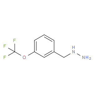 3-Trifluoromethoxy-benzyl-hydrazine