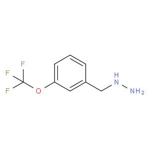 3-Trifluoromethoxy-benzyl-hydrazine