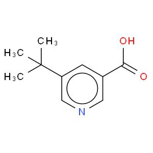 5-tert-butylnicotinic acid